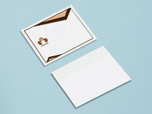 Rush A-6 Envelopes